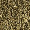 Raw Dried Beans